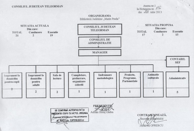 organigrama BJT